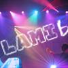 Lamib