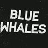 bluewha96
