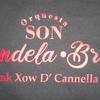 FunkXoWdCannella2020