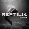 David-Reptilia