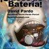 David Pardo Porcel