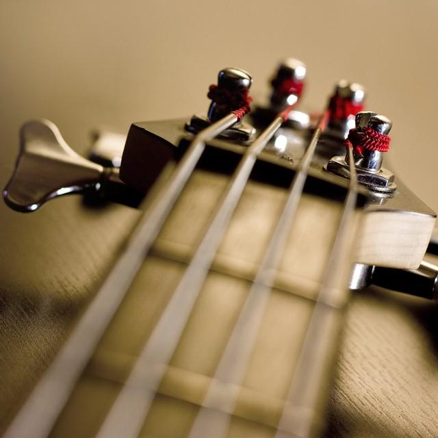 Disturbed_strings