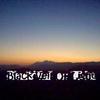 Black Veil Of Light