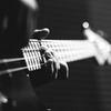 bassman-44241