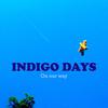 indigo 11